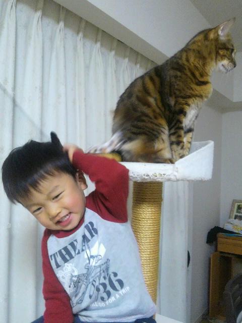 登るよね〜